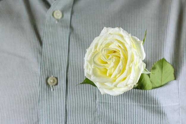 Primo piano rosa bianca nella tasca della camicia