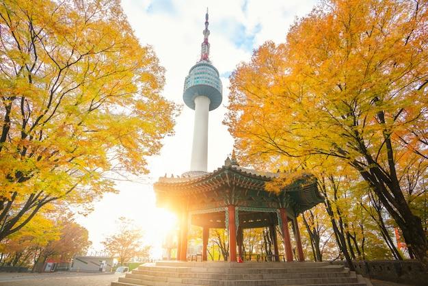 Primo piano sul parco in autunno e sulla torre di seoul