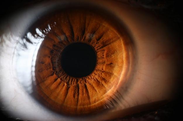 Primo piano umano del supermacro dell'occhio bruno