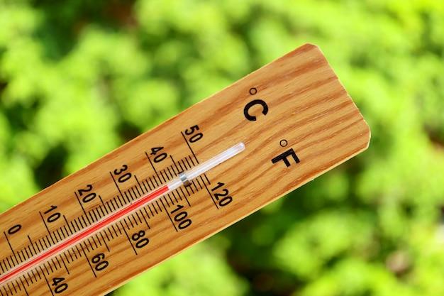 Primo piano un termometro che mostra temperatura elevata contro gli alberi verdi alla luce solare di estate