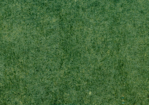 Primo piano verde di struttura