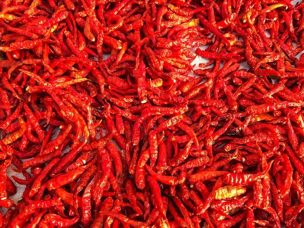 Priorità bassa asciutta rossa luminosa del peperoncino rosso, spezie calde dell'alimento della tailandia