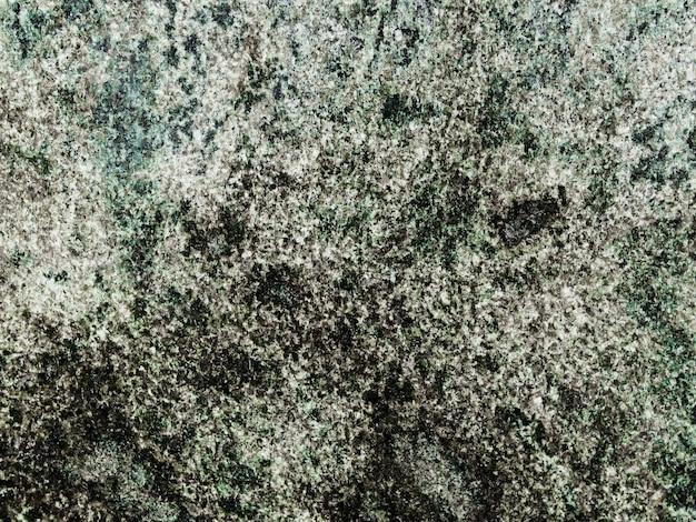 Priorità bassa del lichene che cresce sulla roccia