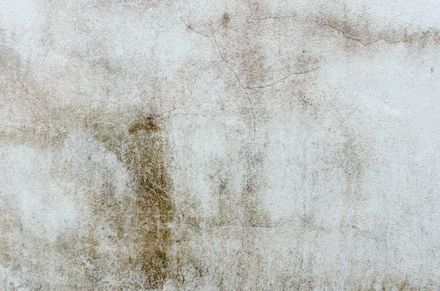 Priorità bassa della parete di piastrelle di cemento
