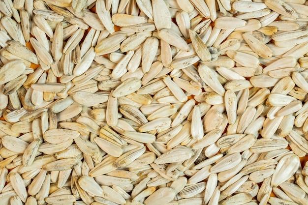 Priorità bassa della vista superiore dei semi di girasole bianchi