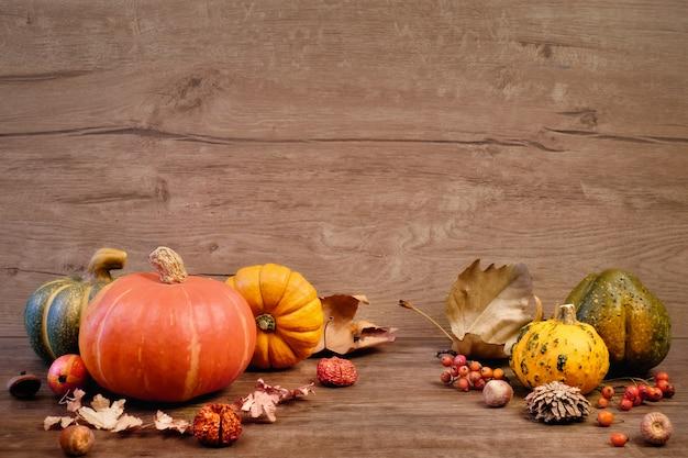 Priorità bassa di autunno con le decorazioni asciutte di caduta su legno