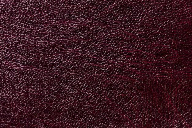 Priorità bassa di cuoio viola laccata di struttura, primo piano. colore del vino scuro