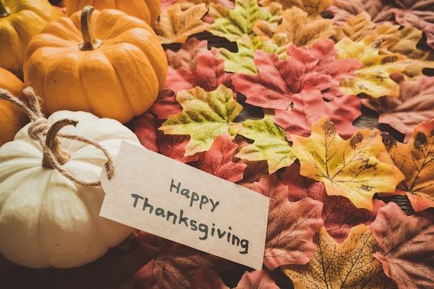 Priorità bassa di giorno di autunno del ringraziamento con etichetta zucca e saluto
