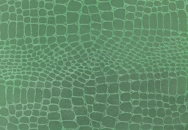 Priorità bassa di struttura di cuoio verde, foto del primo piano,