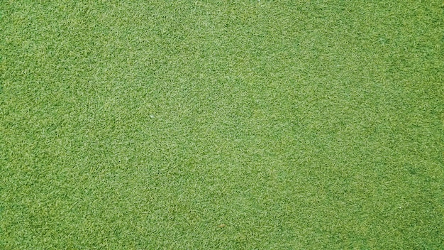 Priorità bassa di struttura di erba