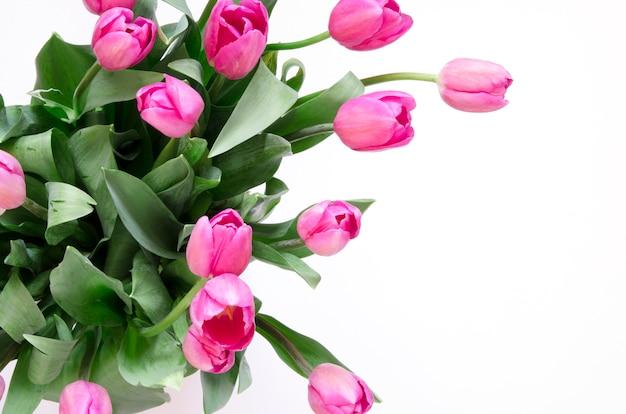 Priorità bassa floreale con i fiori dei tulipani su priorità bassa bianca. vista piana, vista dall'alto. bella cartolina d'auguri con tulipani per la festa della mamma, matrimonio o evento felice