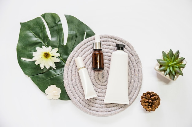 Prodotto cosmetico e bottiglia di olio essenziale su montagne russe con fiore; foglia; pigne e cactus
