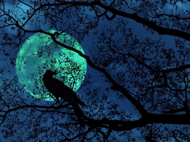 Profili i rami degli alberi per lo sfondo di halloween.
