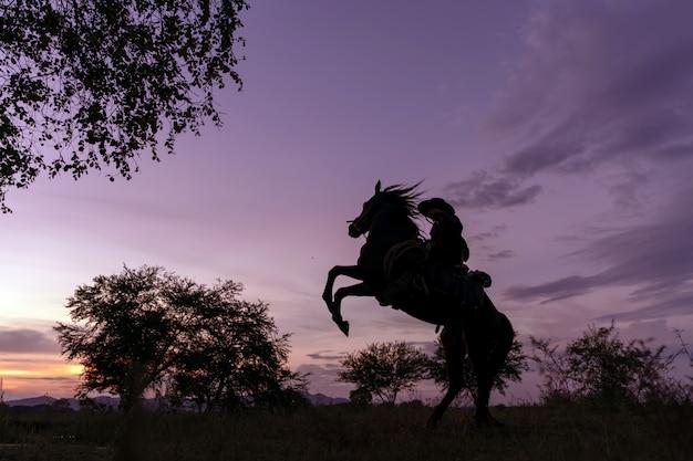 Profili il cowboy che guida su una montagna con un cielo giallo