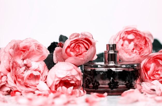 Profumeria, cosmetici, collezione di fragranze