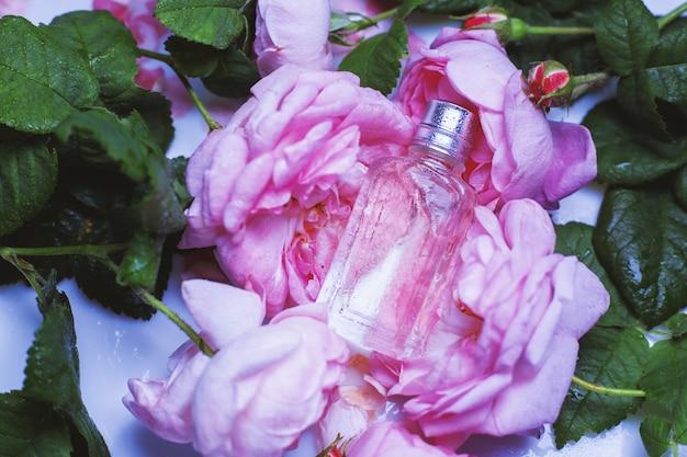 Profumo femminile su rose rosa