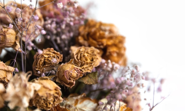 Profumo secco. immagine ravvicinata di fiori secchi in un bouquet. concetto di vita e morte. fiore appassito