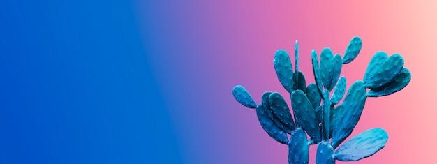Progettazione minima di estate del cactus sulla priorità bassa di gradiente di colore con lo spazio della copia