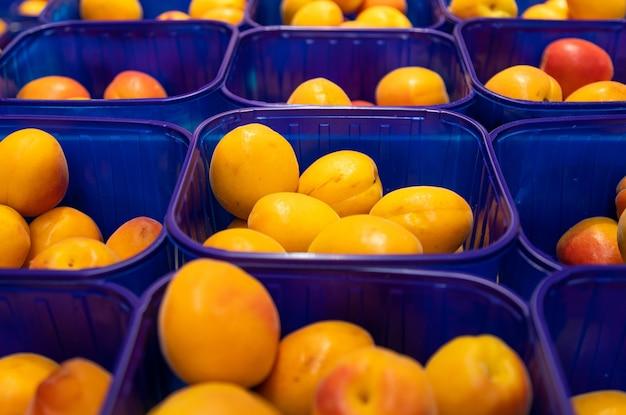 Prugna deliziosa fresca gialla in scatole di plastica blu al mercato dell'alimento. può essere usato per l'agricoltura, vista frontale.