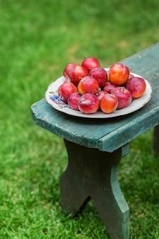 Prugne rosse su un piatto nel giardino