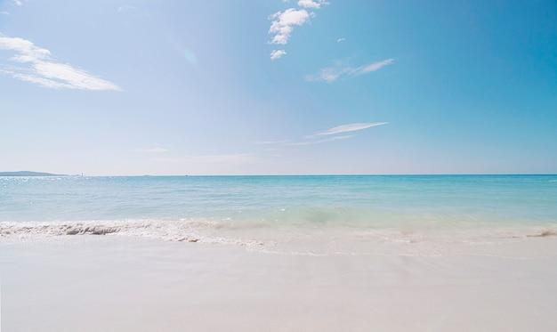 Pulisca il paesaggio della spiaggia del mare