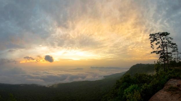 Punto di vista al parco nazionale della tailandia