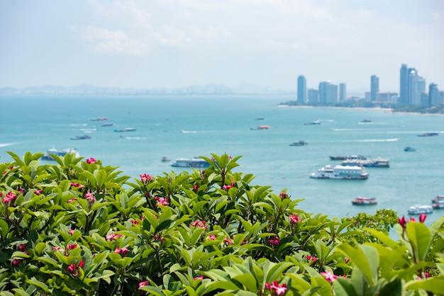 Punto di vista della città di pattaya plumeria rosa o fiore del frangipane sulla collina