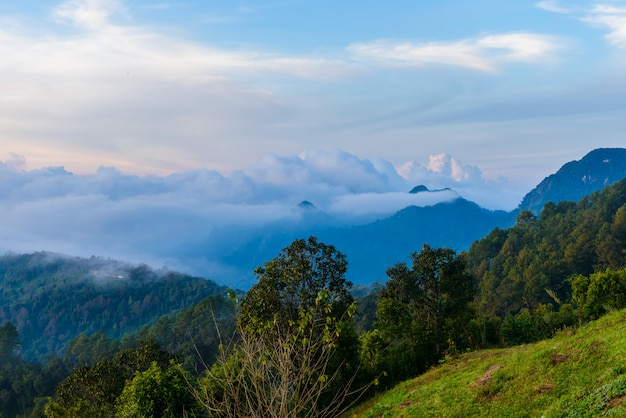 Punto di vista di lunedì sone, parco nazionale di doi pha hom pok, montagna di angkhang, chiang mai, tailandia