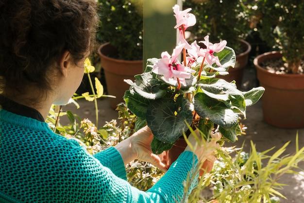 Punto di vista posteriore del fiore della tenuta della donna in vaso