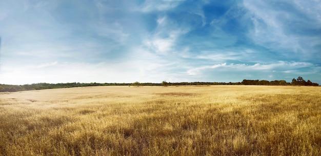 Puru kambera landscape