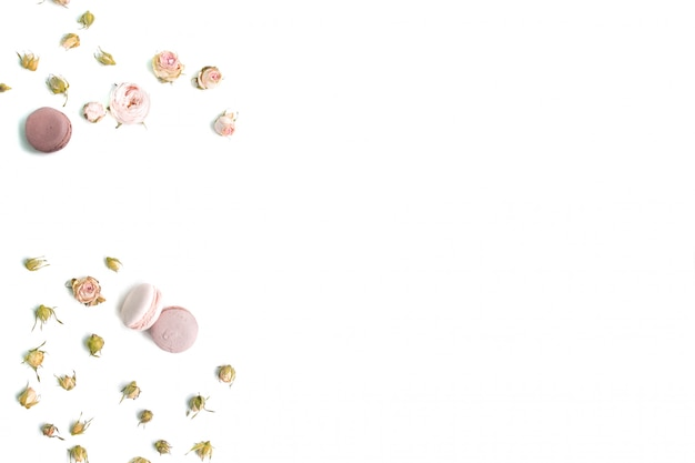 Quadro di rose su sfondo bianco. disteso. vista dall'alto.
