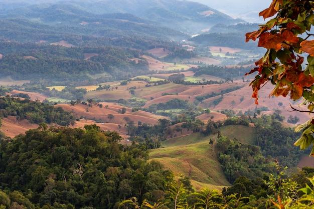 Quando le montagne diventano campi di grano. è triste vedere