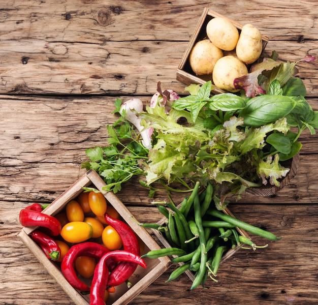Raccogli verdure fresche e verdure