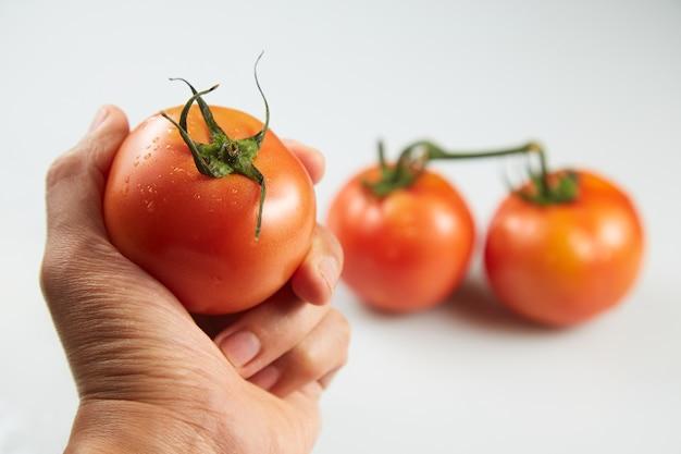 Raccogliere un pomodoro su bianco