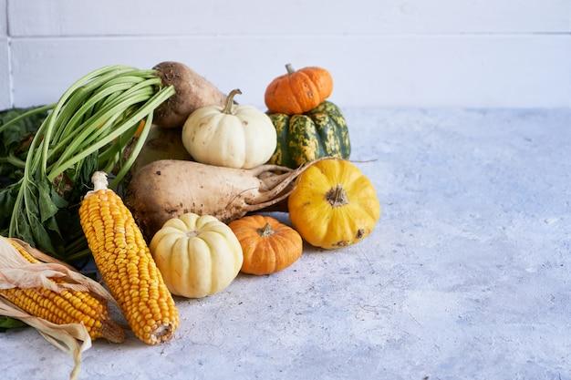 Raccolta autunnale di verdure. zucca, ravanello, mais