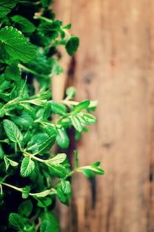 Raccolta di erbe fresche biologiche melissa, menta, timo, basilico, prezzemolo su fondo in legno. concetto astratto di primavera o estate.