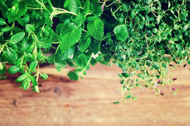 Raccolta di erbe fresche biologiche melissa, menta, timo, basilico, prezzemolo su fondo in legno.