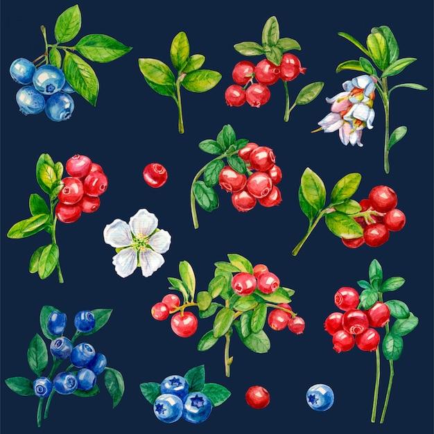 Raccolta di frutti di bosco su uno sfondo scuro