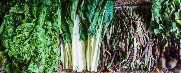Raccolta di verdure verdi fresche disposte su cestini, lattuga, baccelli, bietole, barbabietole