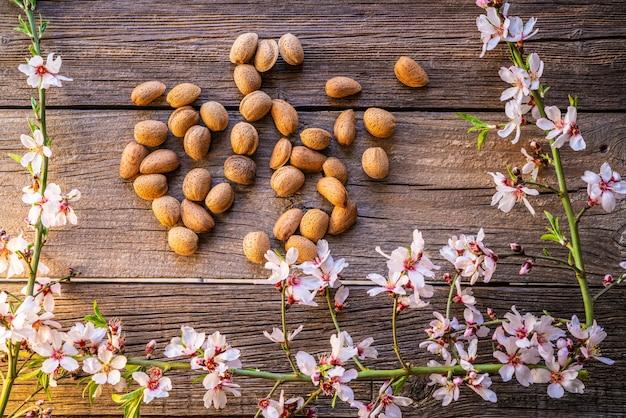 Raccolto di fiori di primavera mandorla su legno