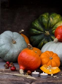 Raccolto di zucche colorate, orecchie, candele e biancospino