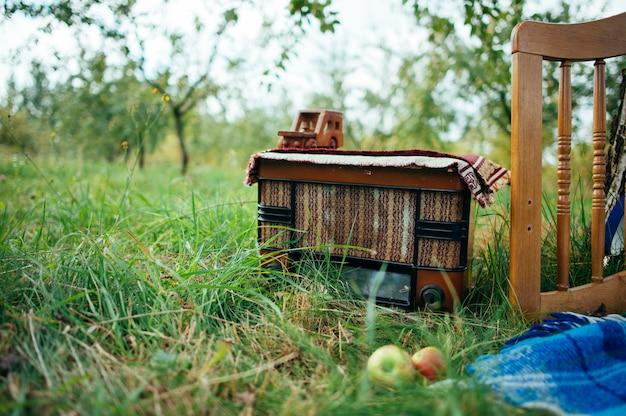 Radio etro in legno su permesso verde