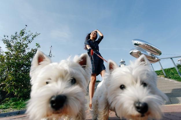 Ragazza alla moda in vestito che cammina con due cani