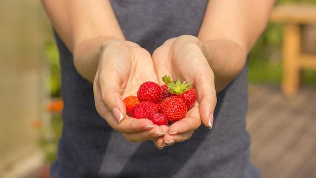 Ragazza che tiene le fragole fresche in sue mani, primo piano