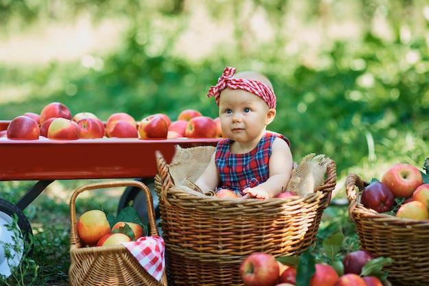 Ragazza con la mela nel meleto. bella ragazza che mangia mela organica nel frutteto.