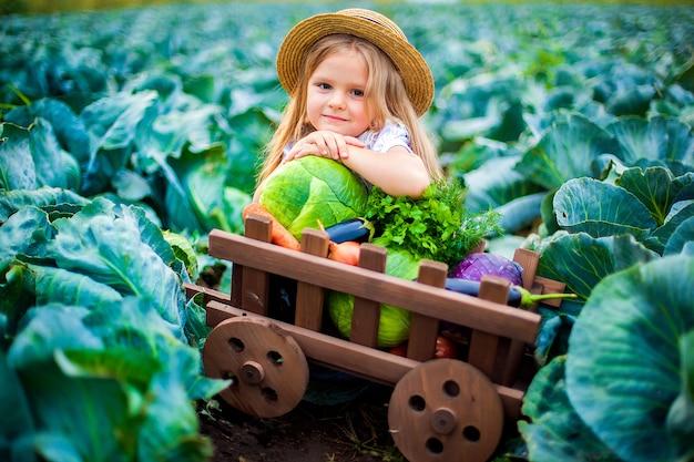 Ragazza felice in cappello di paglia sul campo di cavoli con cesto di verdure