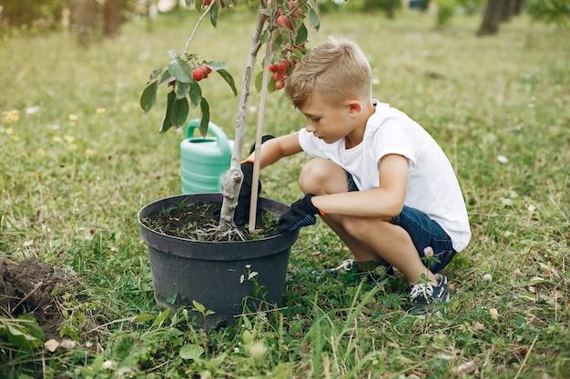 Ragazzino sveglio che pianta un albero su un parco