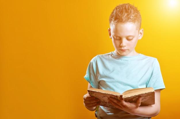 Ragazzo allegro in una maglietta leggera che tiene un libro su un colorato