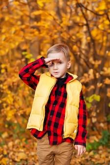 Ragazzo biondo che sta all'aperto. tempo d'autunno. bambino felice che gioca alla natura di caduta. moda autunnale per bambini. infanzia felice