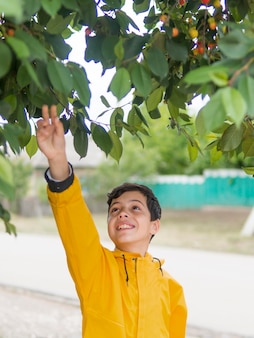 Ragazzo carino in impermeabile e ciliegio